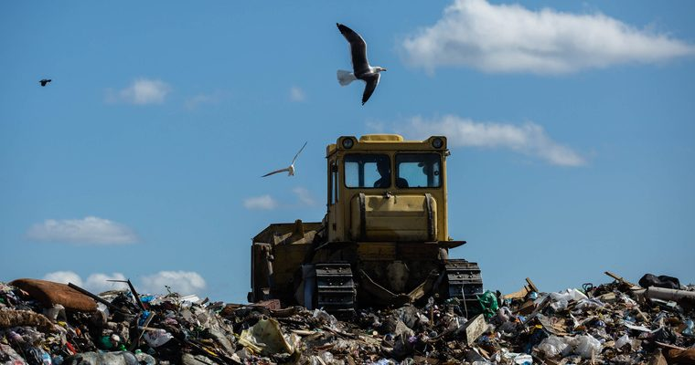 Россия запрет захоронение пищевые отходы