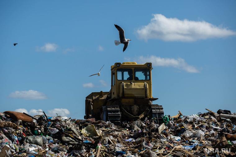 Мишустину предложили запретить вывозить мусор на свалки. Их хватит максимум на 5 лет