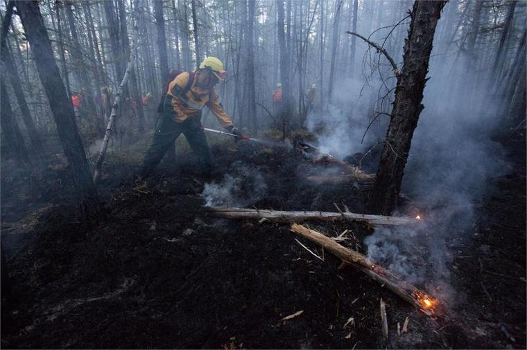 На Урале перестал гореть лес. Это связали с коронавирусом