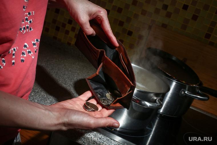 Почему закон о пособиях домохозяйкам не спасет российские семьи. Мнение экономиста