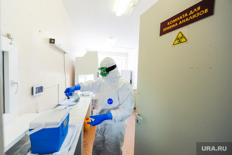 Семь видов высыпаний могут быть симптомами коронавируса