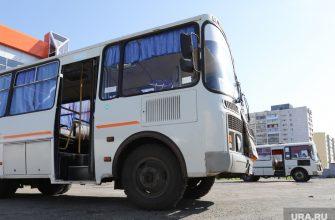 Забастовка курганских автобусов