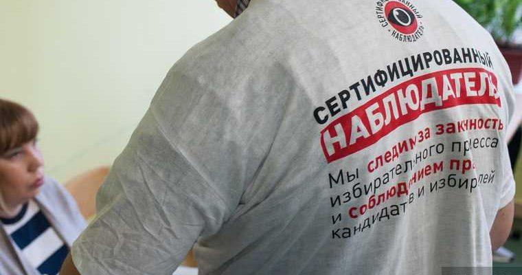 Постников голосование поправки конституция наблюдатель УИК