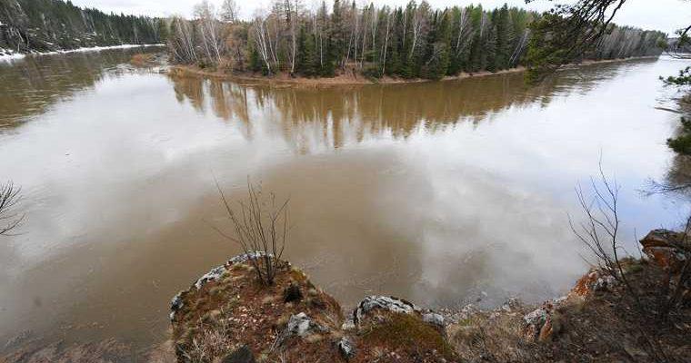 загрязнение реки чусовой