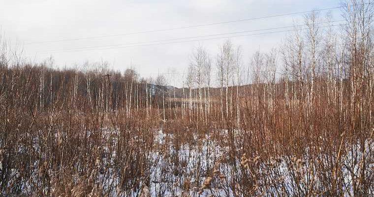 новый комплекс мусор Свердловская область экология