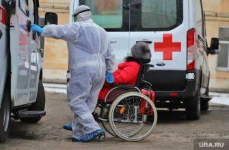 Челябинская область коронавирус COVID заражения умерли 24 декабря
