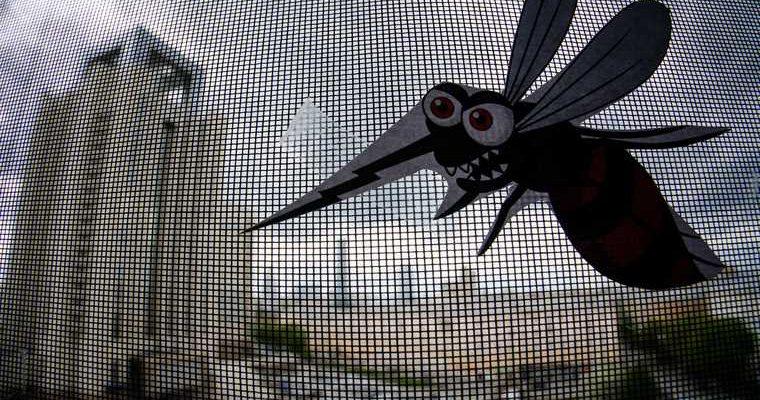 нашествие комаров
