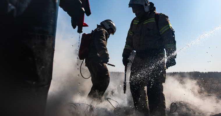 пожары лес Свердловская область запрет разведение огня