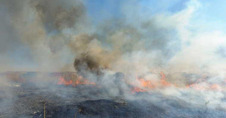 ЯНАО пожароопасный сезон
