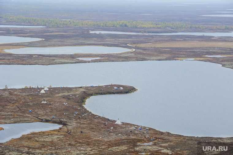 Природа Ямало-Ненецкого автономного округа